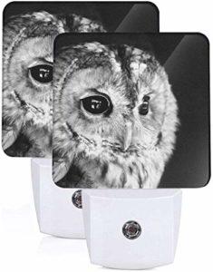 Lot de 2 Veilleuses LED Nez de cochon mignon sans couture murale Graphique Auto Senor Dusk to Dawn Night Light Plug in Indoor for Adult